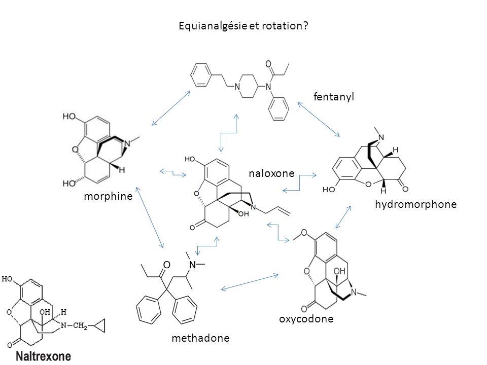 Equianalgésie et rotation
