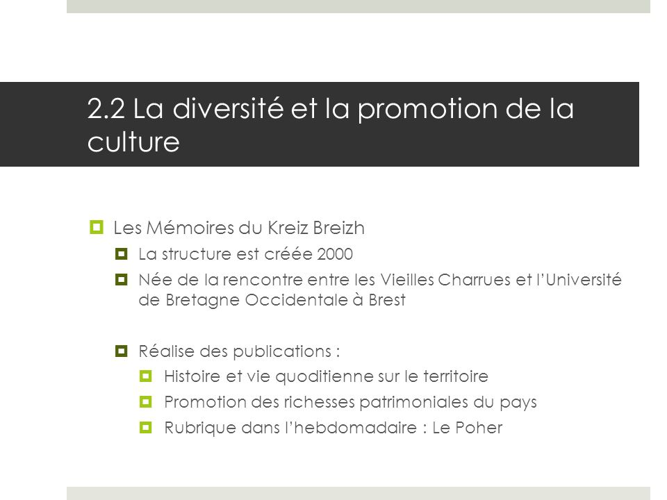 2.2 La diversité et la promotion de la culture