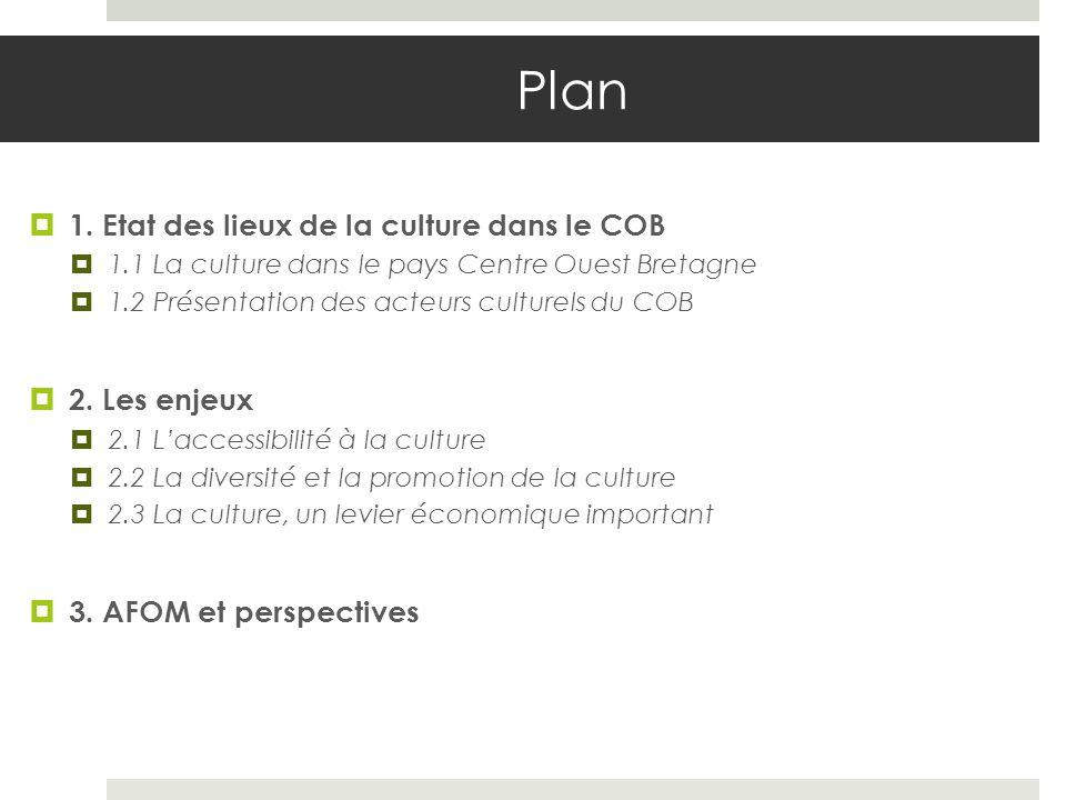 Plan 1. Etat des lieux de la culture dans le COB 2. Les enjeux