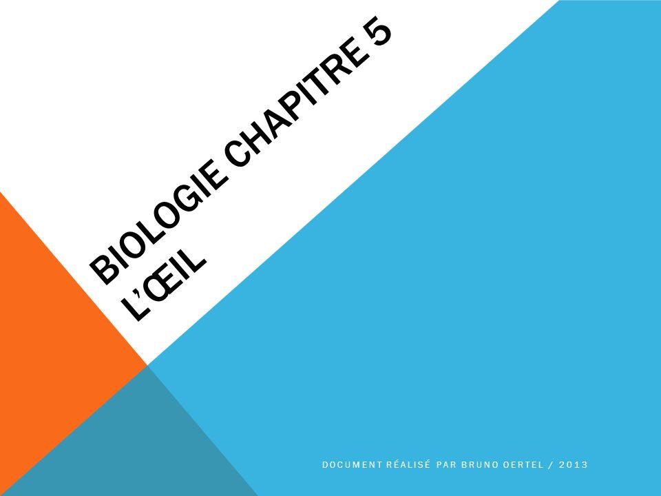 Biologie chapitre 5 L'œil