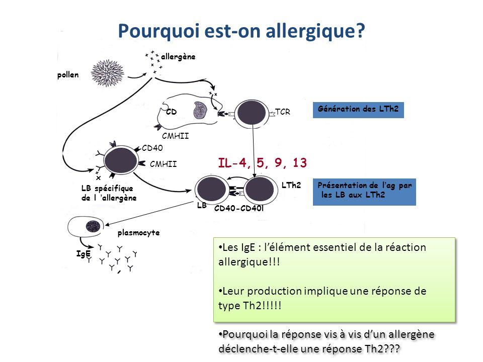 Pourquoi est-on allergique