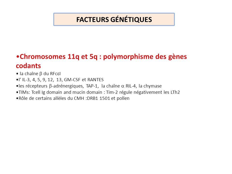 Chromosomes 11q et 5q : polymorphisme des gènes codants