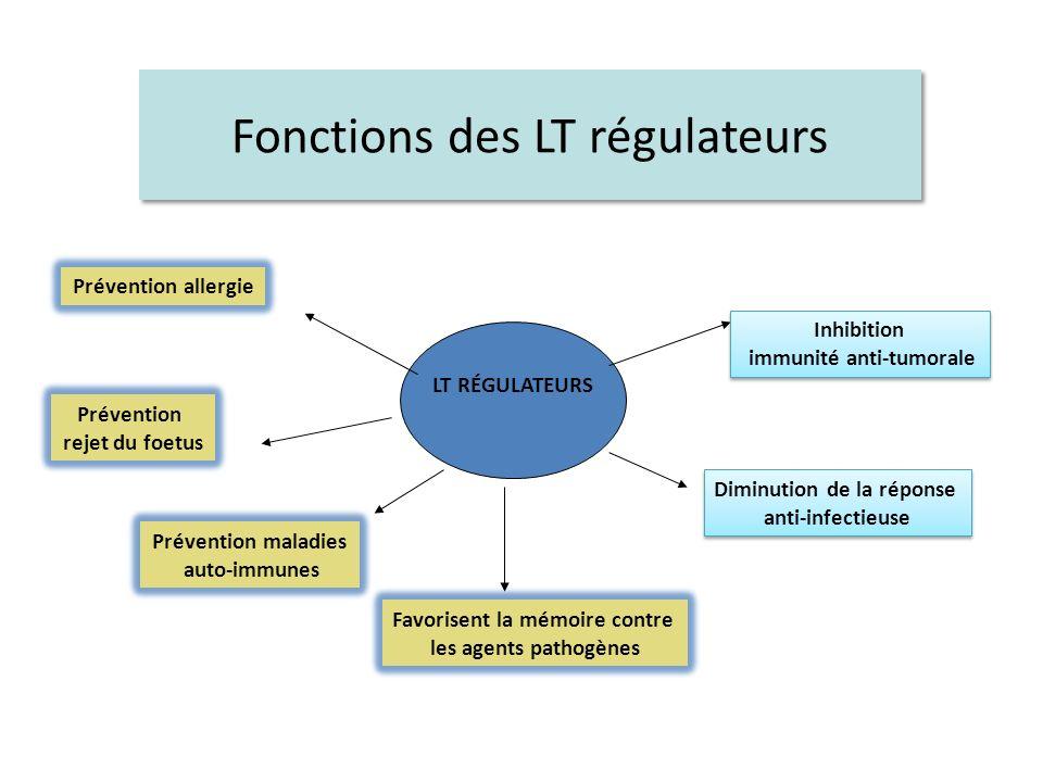 Fonctions des LT régulateurs
