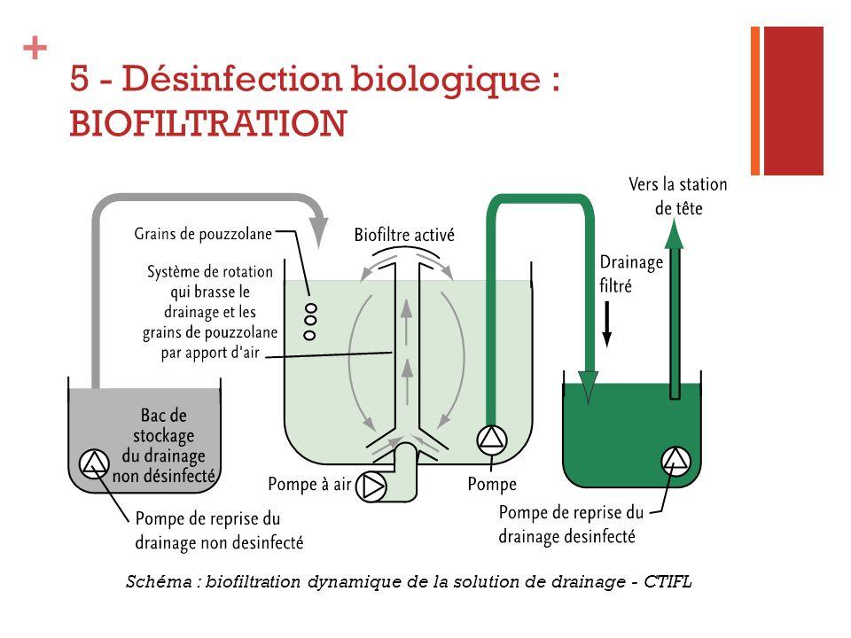 5 - Désinfection biologique : BIOFILTRATION