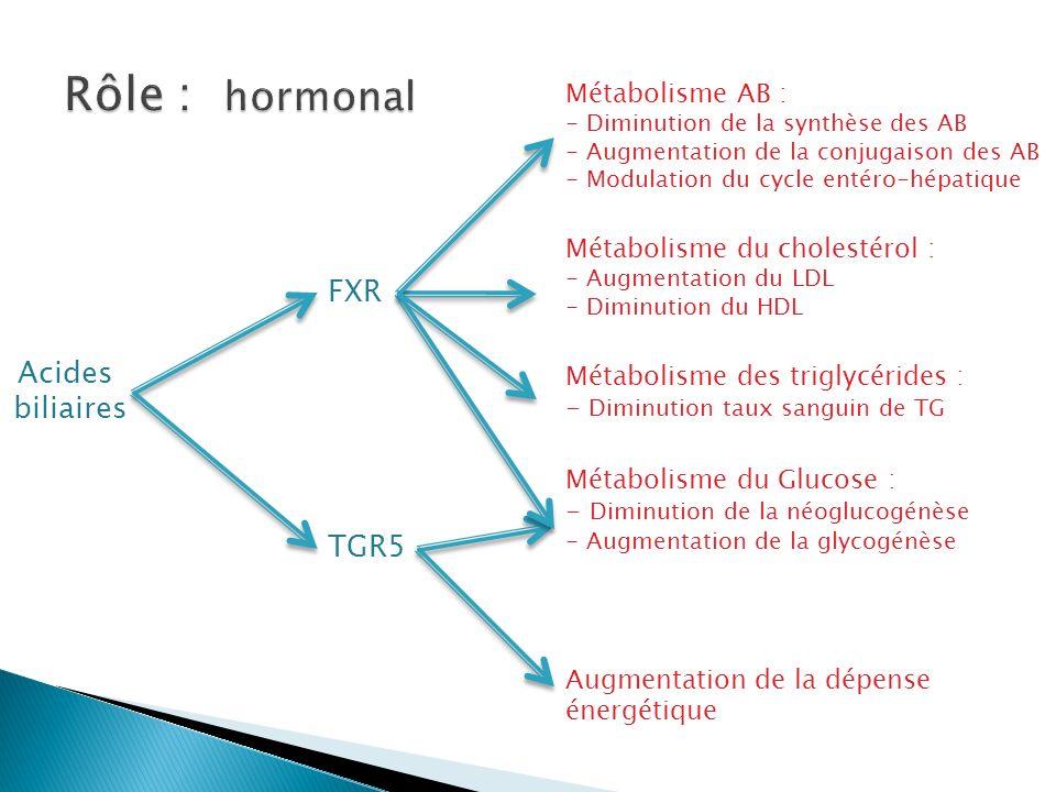 Rôle : hormonal FXR Acides biliaires TGR5 Métabolisme AB :
