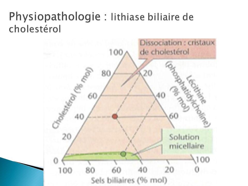 Physiopathologie : lithiase biliaire de cholestérol