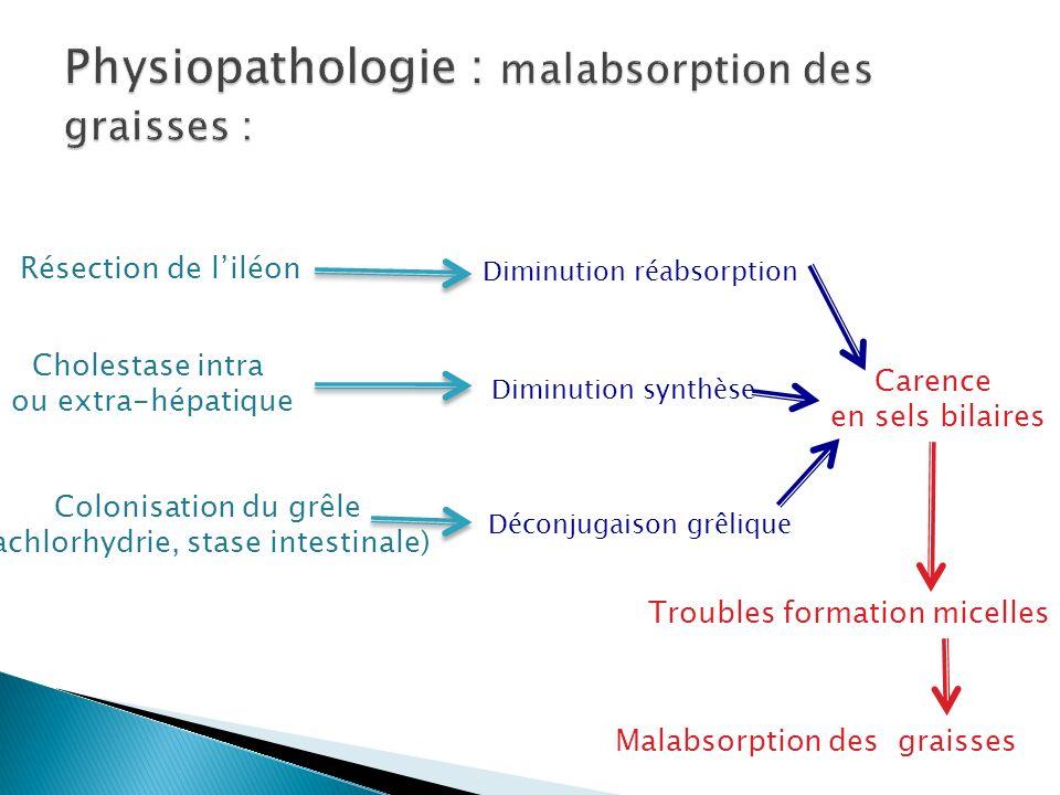 Physiopathologie : malabsorption des graisses :