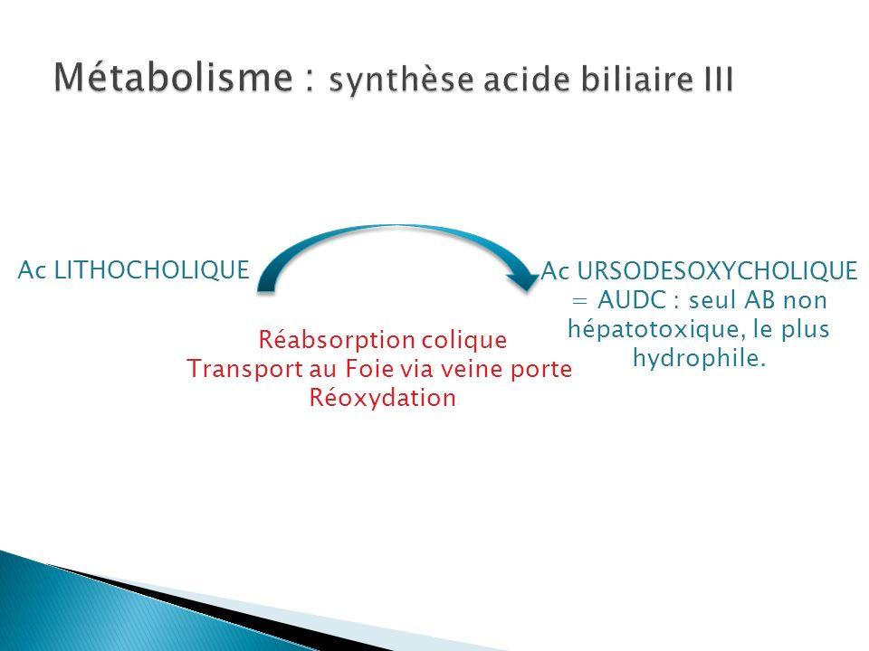 Métabolisme : synthèse acide biliaire III