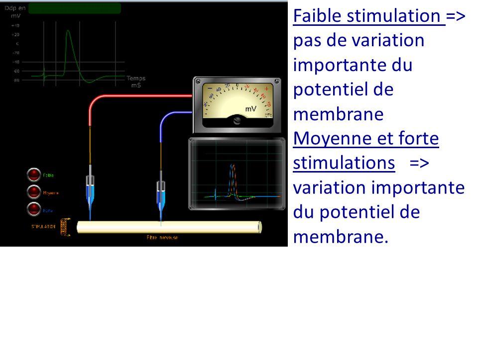 Faible stimulation => pas de variation importante du