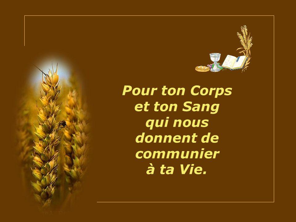 Pour ton Corps et ton Sang qui nous donnent de communier à ta Vie.