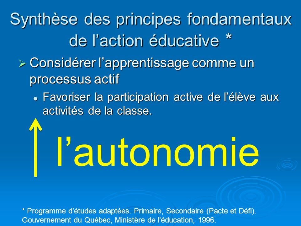 Synthèse des principes fondamentaux de l'action éducative *