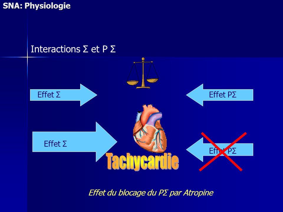 Effet du blocage du PΣ par Atropine