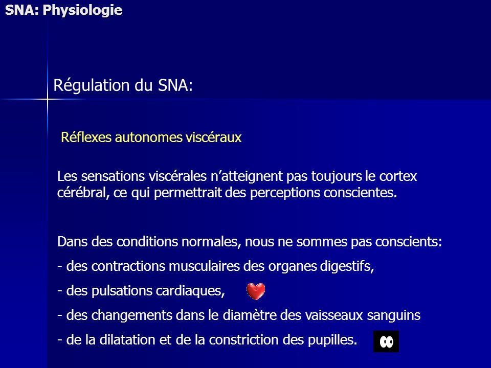 Régulation du SNA: SNA: Physiologie Réflexes autonomes viscéraux