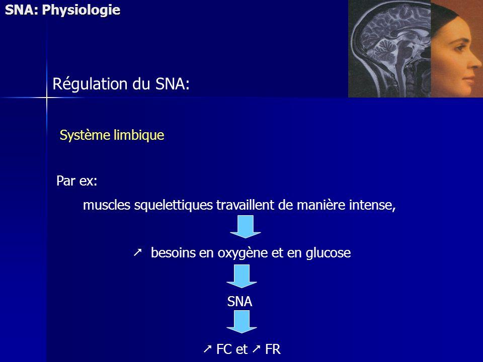 Régulation du SNA: SNA: Physiologie Système limbique Par ex: