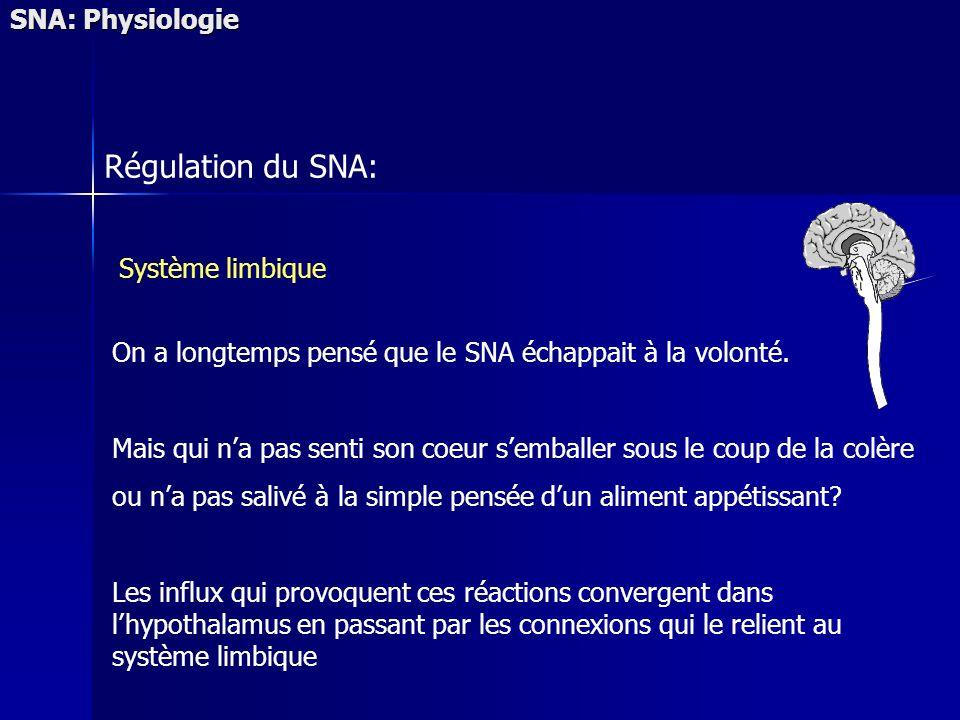 Régulation du SNA: SNA: Physiologie Système limbique