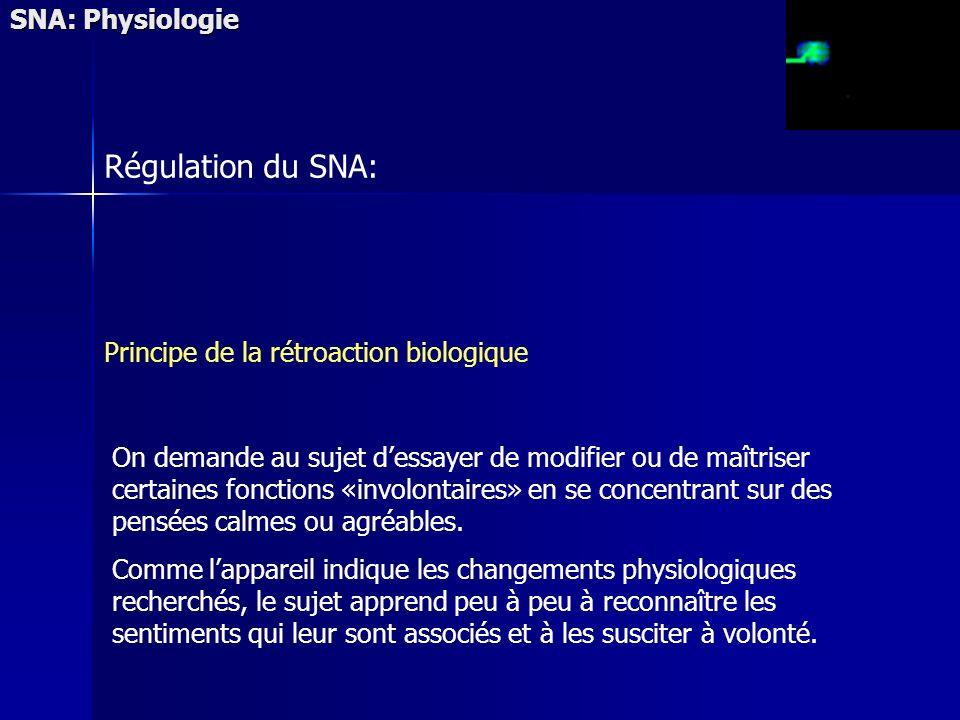 Régulation du SNA: SNA: Physiologie
