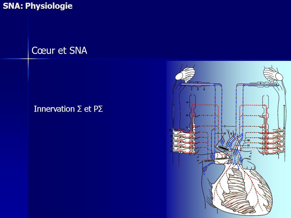 SNA: Physiologie Cœur et SNA Innervation Σ et PΣ