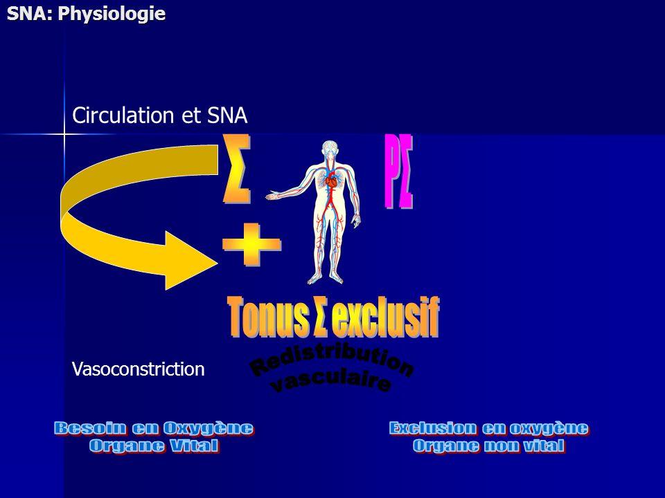 Σ PΣ + Besoin en Oxygène Organe Vital Exclusion en oxygène