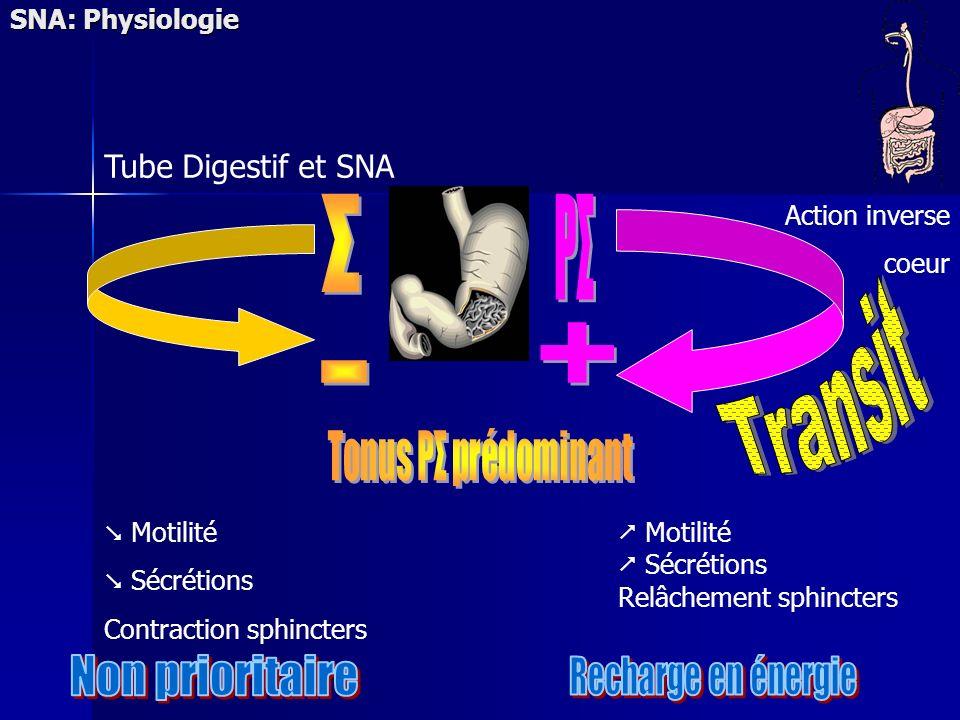 Σ PΣ Transit + - Non prioritaire Recharge en énergie
