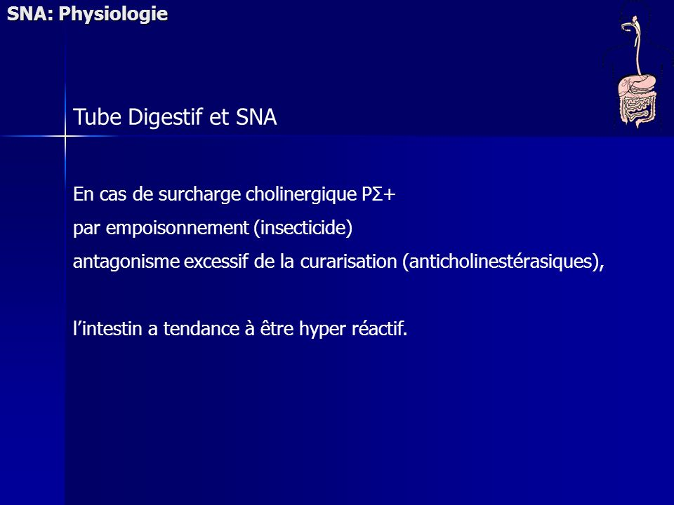 Tube Digestif et SNA SNA: Physiologie