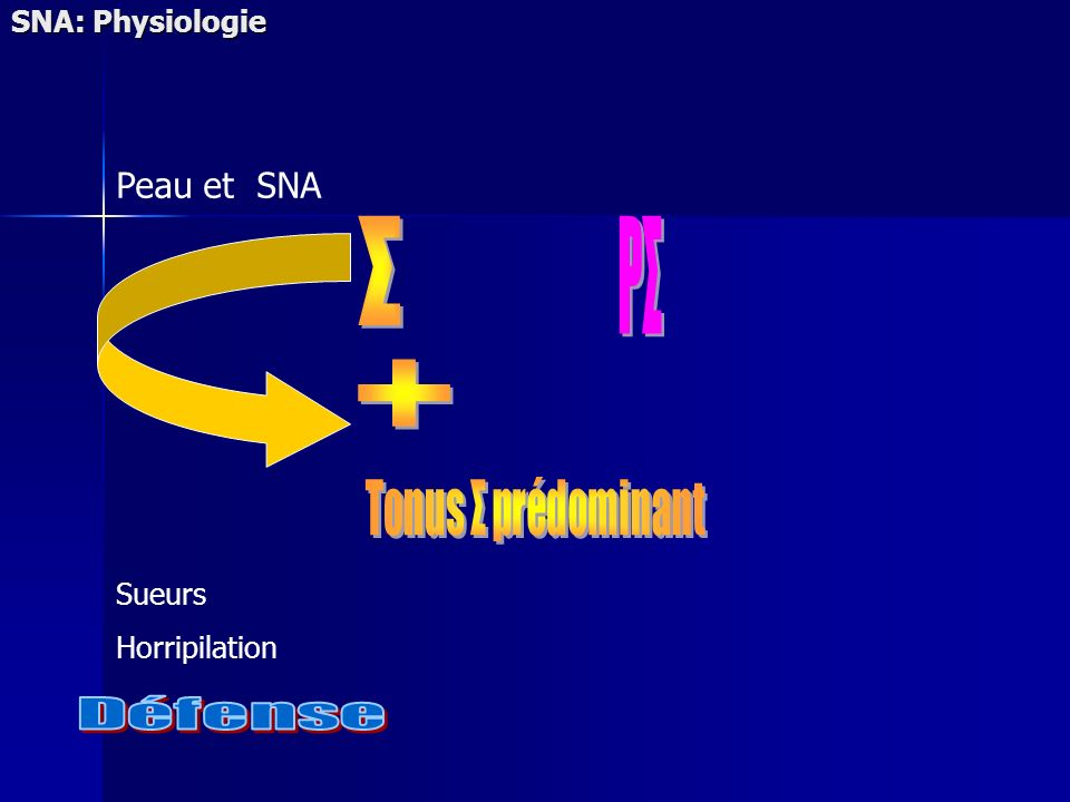 Σ PΣ + Défense Peau et SNA SNA: Physiologie Sueurs Horripilation