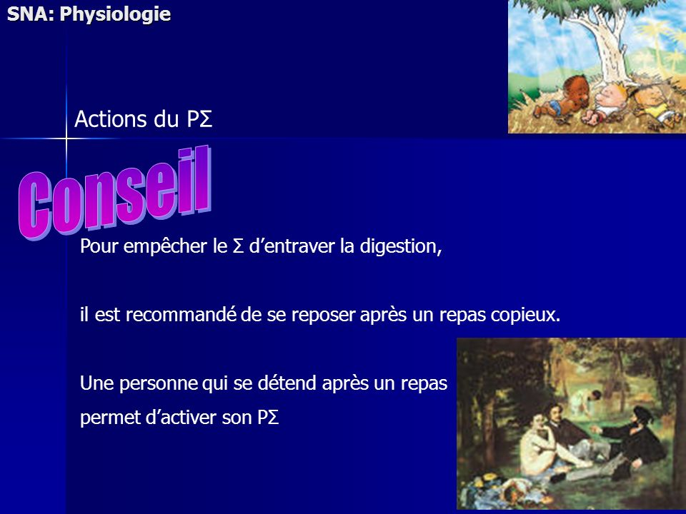 Conseil Actions du PΣ SNA: Physiologie