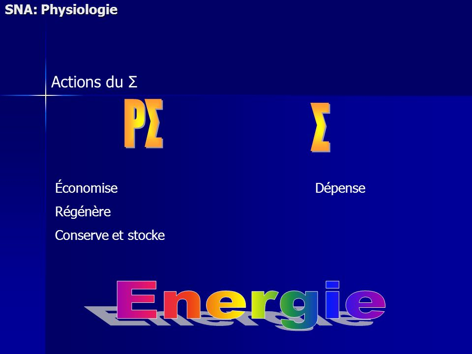 PΣ Σ Energie Actions du Σ SNA: Physiologie Économise Régénère