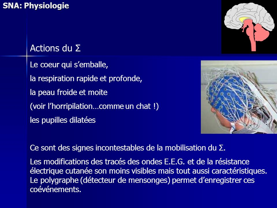 Actions du Σ SNA: Physiologie Le coeur qui s'emballe,