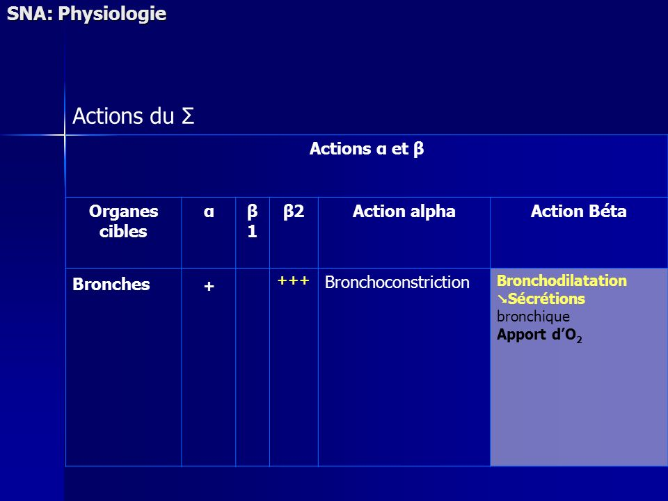 Actions du Σ + SNA: Physiologie Actions α et β Organes cibles α β1 β2