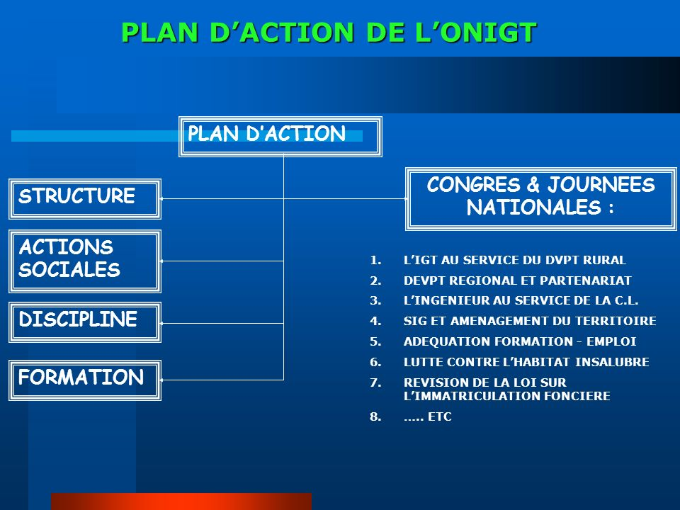 PLAN D'ACTION DE L'ONIGT