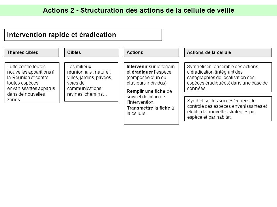 Actions 2 - Structuration des actions de la cellule de veille