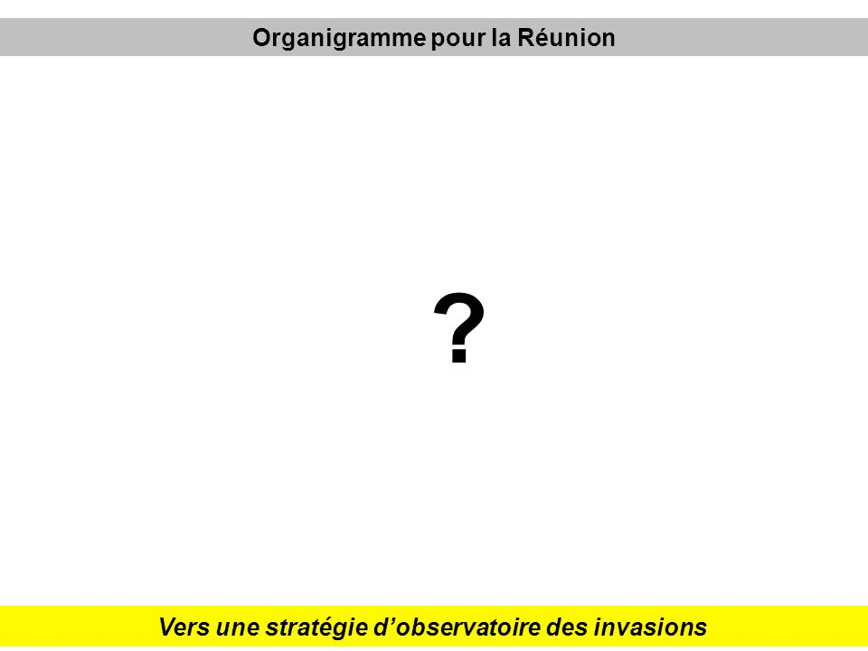 Organigramme pour la Réunion
