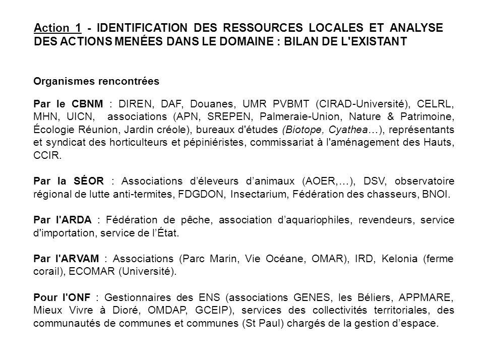 Action 1 - IDENTIFICATION DES RESSOURCES LOCALES ET ANALYSE DES ACTIONS MENÉES DANS LE DOMAINE : BILAN DE L EXISTANT