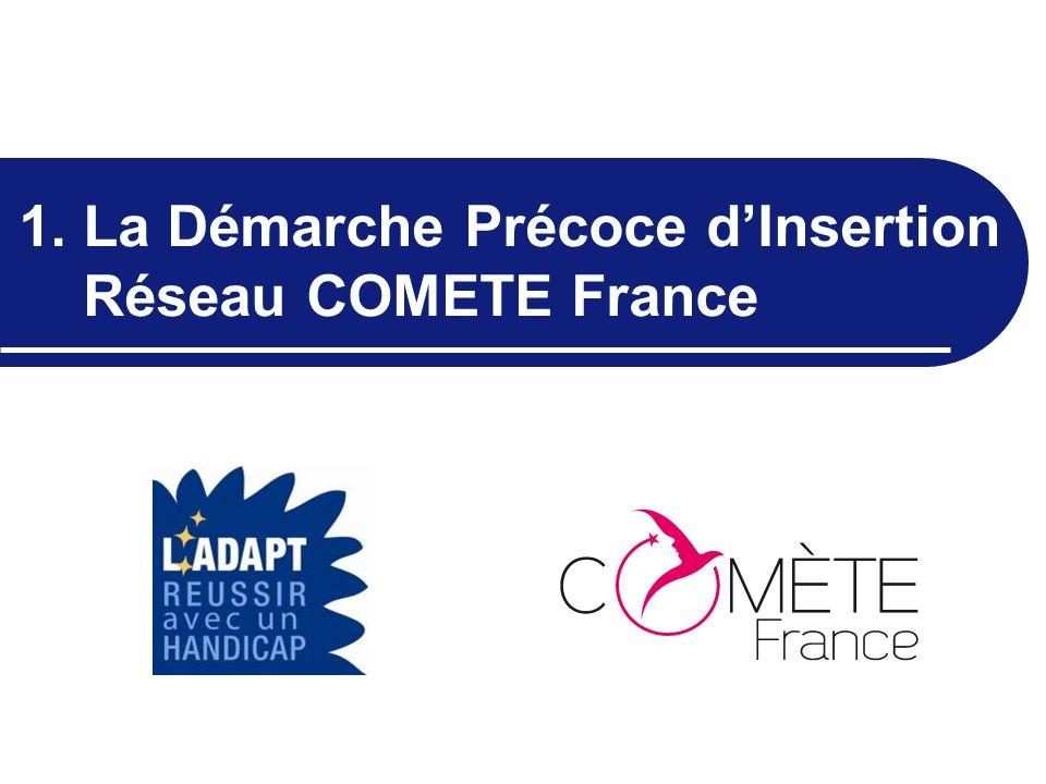 1. La Démarche Précoce d'Insertion Réseau COMETE France