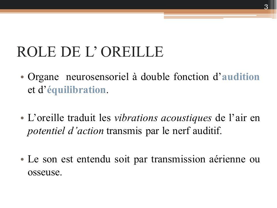 ROLE DE L' OREILLE Organe neurosensoriel à double fonction d'audition et d'équilibration.