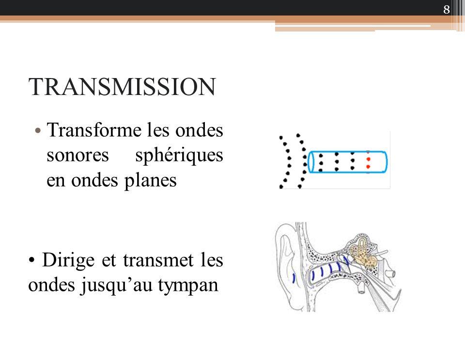 TRANSMISSION Transforme les ondes sonores sphériques en ondes planes