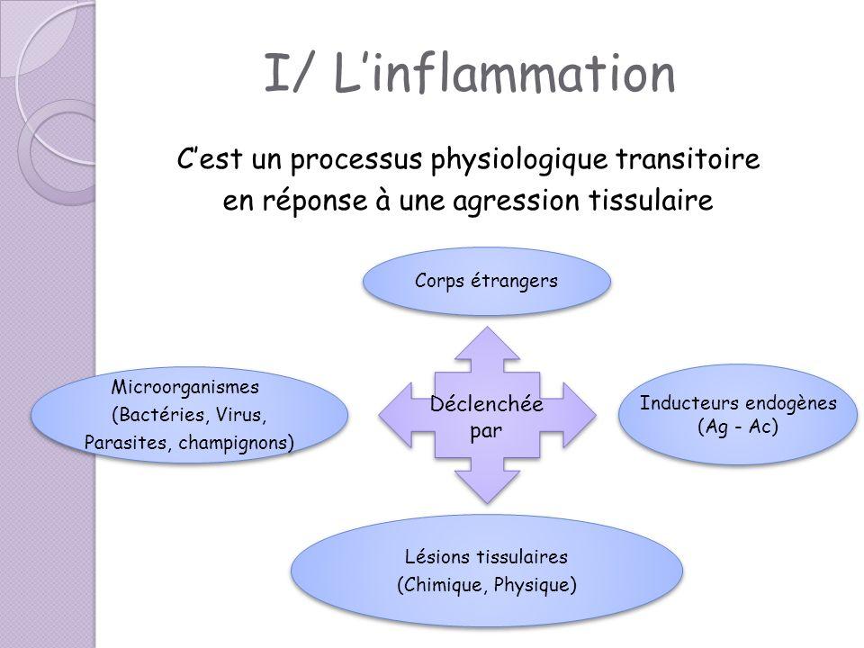 I/ L'inflammation C'est un processus physiologique transitoire