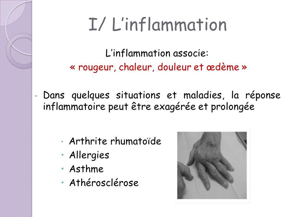 I/ L'inflammation L'inflammation associe: