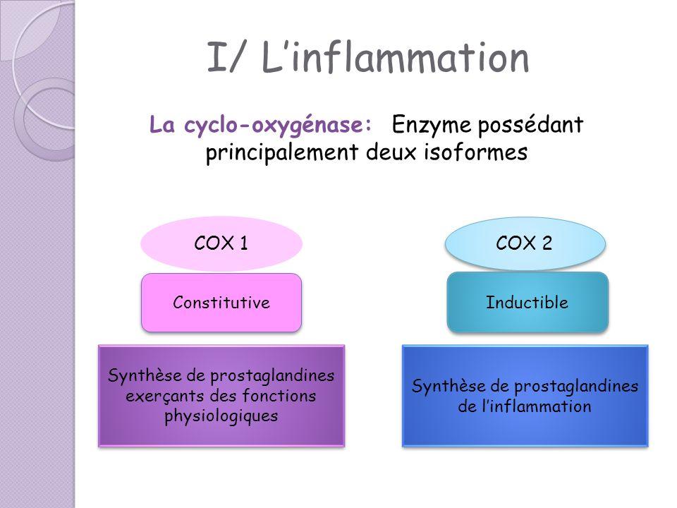 I/ L'inflammation La cyclo-oxygénase: Enzyme possédant principalement deux isoformes. COX 1. COX 2.