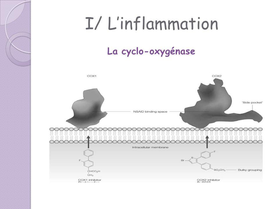 I/ L'inflammation La cyclo-oxygénase
