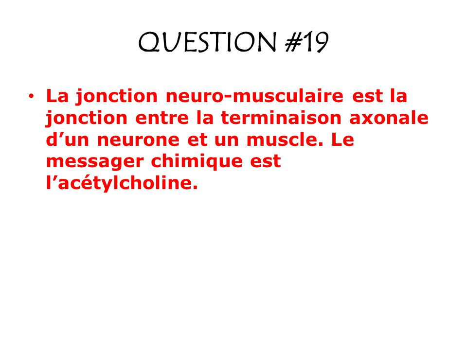QUESTION #19