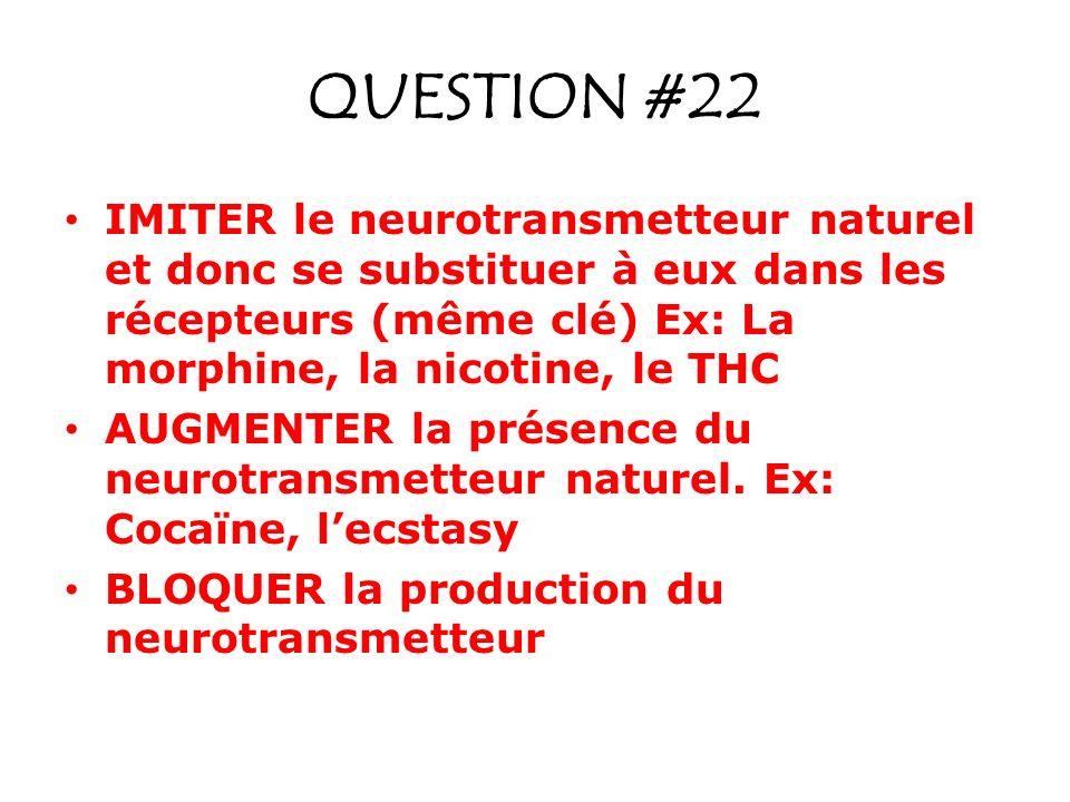 QUESTION #22 IMITER le neurotransmetteur naturel et donc se substituer à eux dans les récepteurs (même clé) Ex: La morphine, la nicotine, le THC.