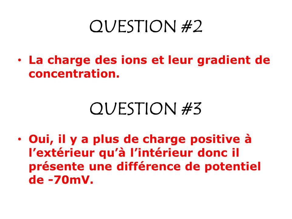 QUESTION #2 La charge des ions et leur gradient de concentration.