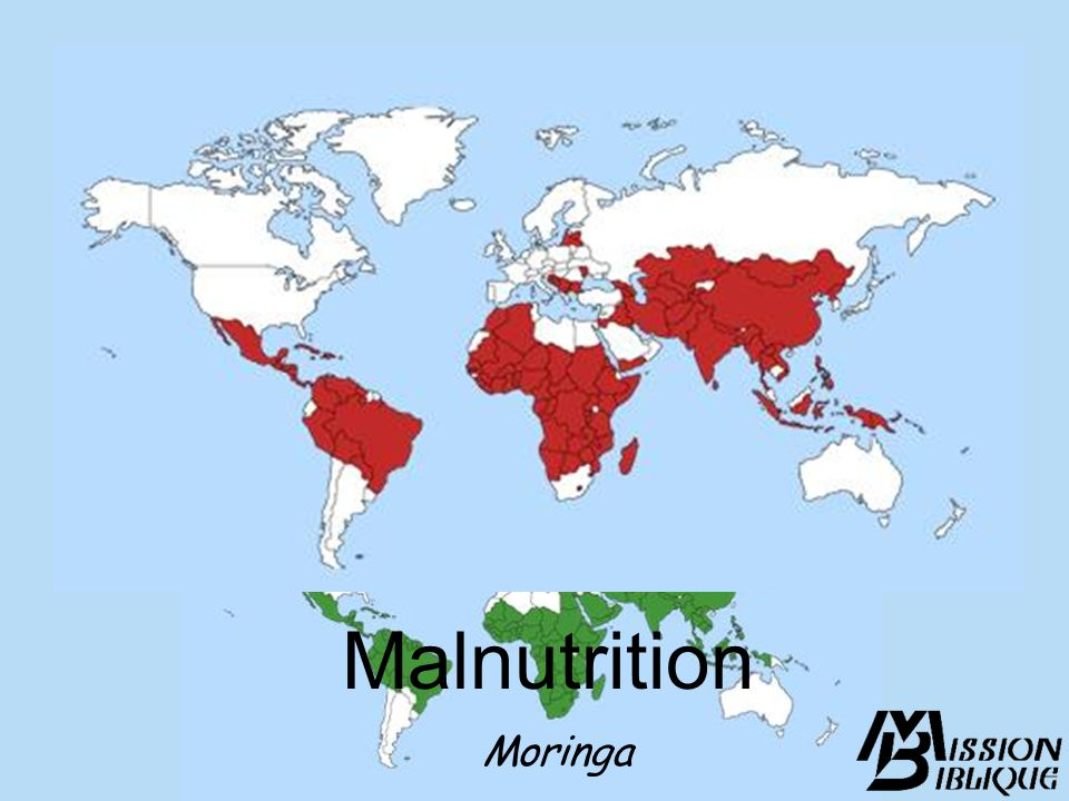 Malnutrition Moringa Slide 7: