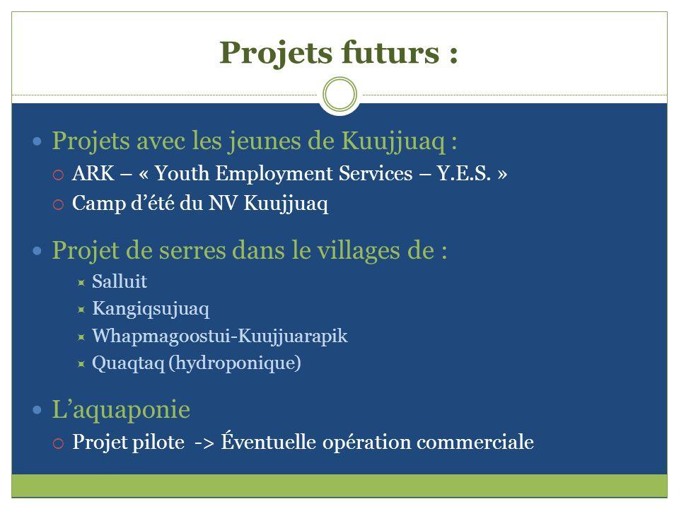 Projets futurs : Projets avec les jeunes de Kuujjuaq :