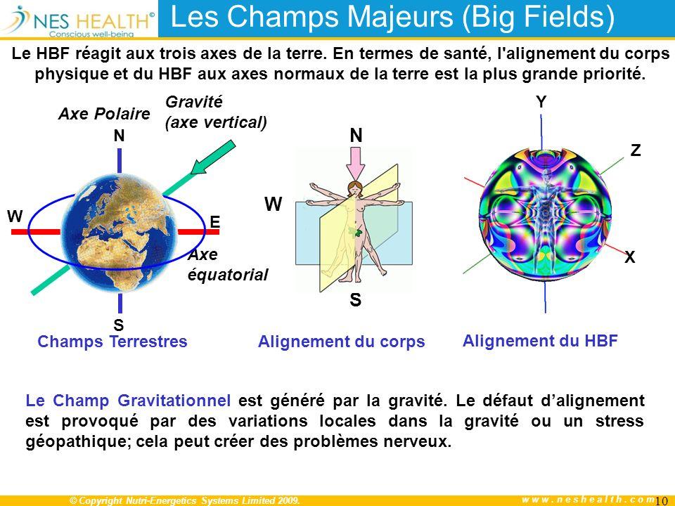 Les Champs Majeurs (Big Fields)