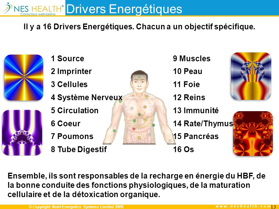 Il y a 16 Drivers Energétiques. Chacun a un objectif spécifique.