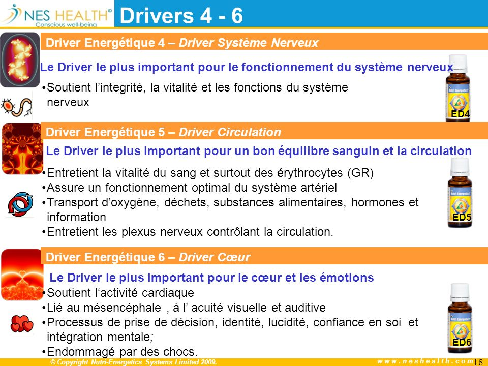Le Driver le plus important pour le fonctionnement du système nerveux
