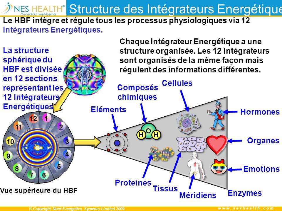 Structure des Intégrateurs Energétiques