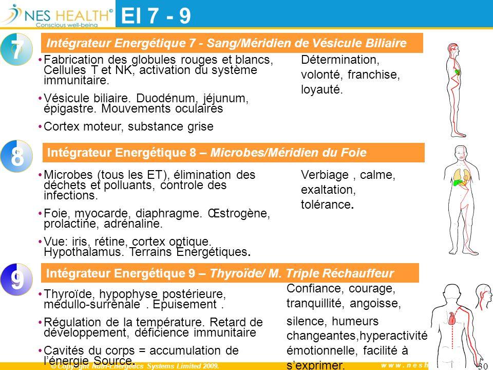 EI 7 - 9 Intégrateur Energétique 7 - Sang/Méridien de Vésicule Biliaire. Détermination, volonté, franchise, loyauté.